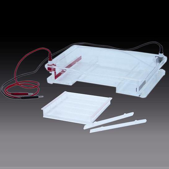 六一 DYCP-31F型  琼脂糖水平电泳仪(槽)(大号)